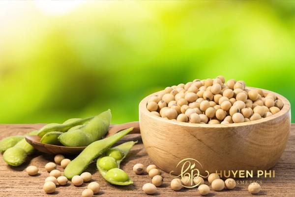 Đậu nành chứa nhiều dưỡng chất có lợi cho sức khỏe và sắc đẹp