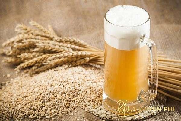 13 Cách tắm trắng bằng bia tại nhà hiệu quả nhất dành cho chị em - ảnh 12