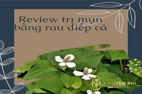 review trị mụn bằng rau diếp cá